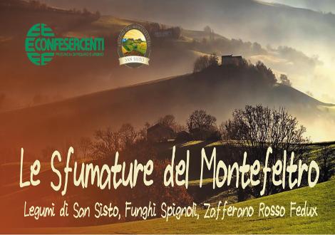 Le sfumature del Montefeltro